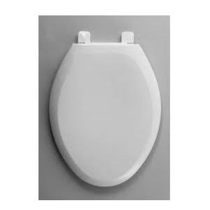 Best Bidet Toilet Seat Reviews Ultimate Guide 2017 Pick A Toilet
