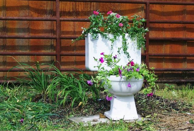 3 Best Composting Toilet Systems Reviews Amp Buying Guide