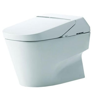 Toto Neorest Dual Flush Toilet